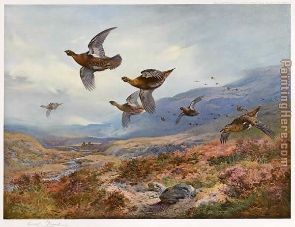 Archibald Thorburn Original Paintings For Sale