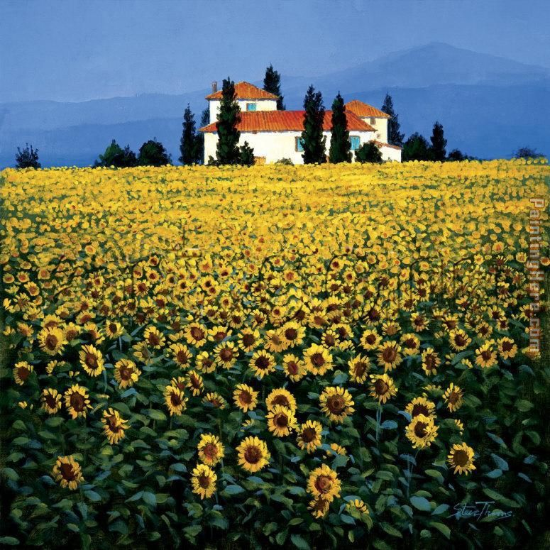 Steve Thoms Sunflower Field Painting Anysize 50 Off