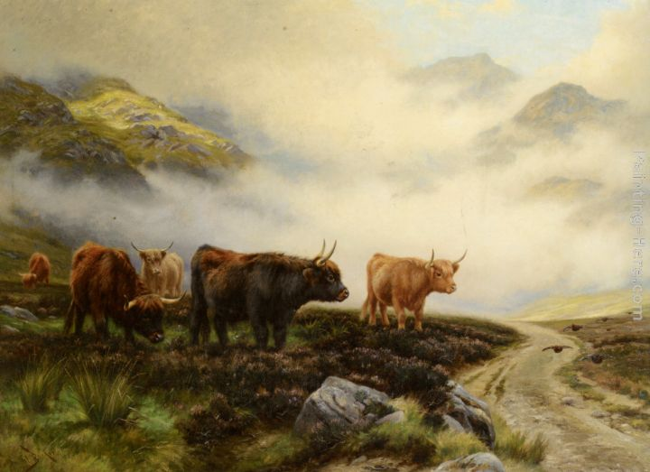 Wright Barker Highland Cattle in a Pass
